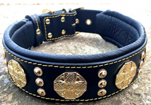 Bestia Maximus Dog Collar for Large Breed Dogs