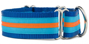 If It Barks Martingale Dog Collar for Large Breed Dogs