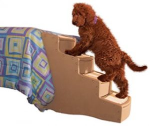 Pet Stairs For Beds 36 Inches High U2013 Pet Gear Easy Step IV Pet Stairs