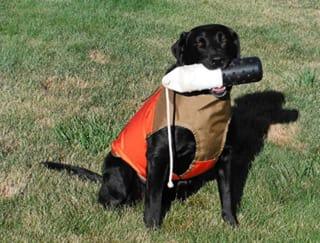 CUGA Dog Vest Skid Plate