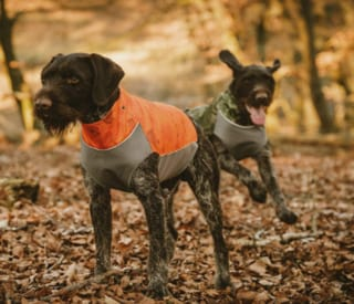 Hurtta Worker Dog Vests
