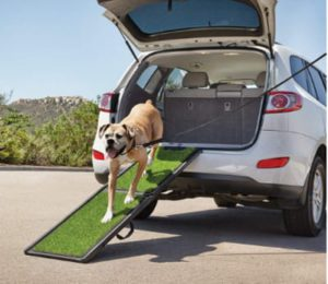 Best Portable Folding Dog Ramps -Good2Go Portable Pet Ramp