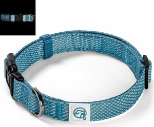 Embark Illuminate Dog Collar
